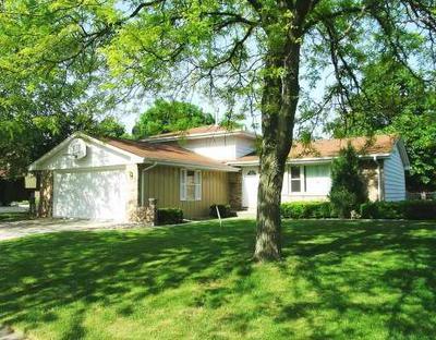 22954 EAST DR, Richton Park, IL 60471 - Photo 1