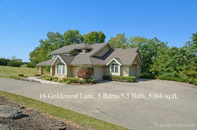 16 GOLDENROD LN, Galena, IL 61036 - Photo 1