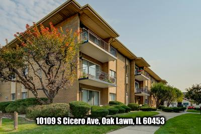 10109 S CICERO AVE APT 305, Oak Lawn, IL 60453 - Photo 1