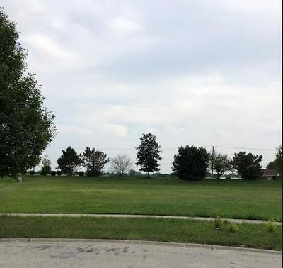 21436 S REDWOOD LN, Shorewood, IL 60404 - Photo 1