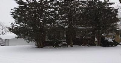 1001 BLACKHAWK DR, University Park, IL 60484 - Photo 2