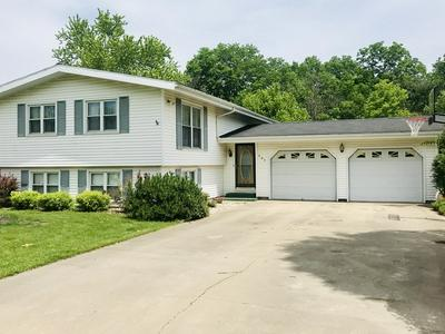 403 SUNRISE ST, Cornell, IL 61319 - Photo 1