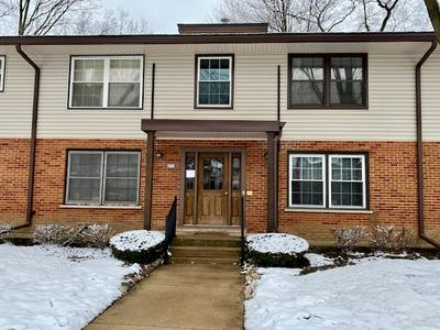 231 WASHINGTON SQ APT B, Elk Grove Village, IL 60007 - Photo 1