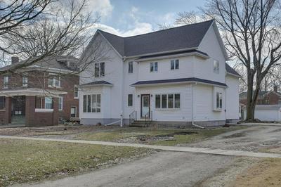 233 S PIATT ST, BEMENT, IL 61813 - Photo 2