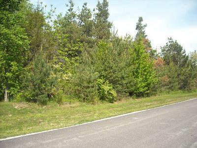 LOT 23 S PINEWOOD LANE, Monee, IL 60449 - Photo 1