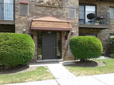 111 W BRANDON CT # E14, Palatine, IL 60067 - Photo 1
