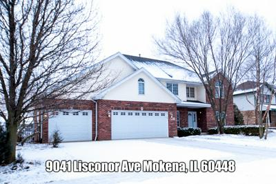 9041 LISCANOR AVE, Mokena, IL 60448 - Photo 1