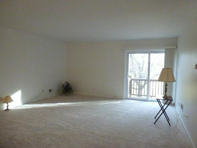 7300 FAIRVIEW AVE APT 204, DOWNERS GROVE, IL 60516 - Photo 2