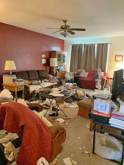 1425 CORAL BELL DR, Joliet, IL 60435 - Photo 2