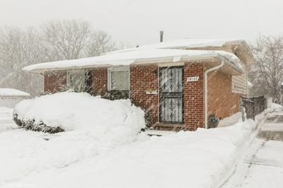 18157 RAVISLOE TER, Country Club Hills, IL 60478 - Photo 1