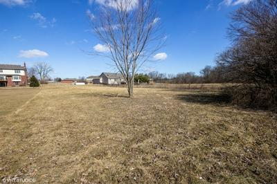 21151 S WOODED COVE DR, ELWOOD, IL 60421 - Photo 2