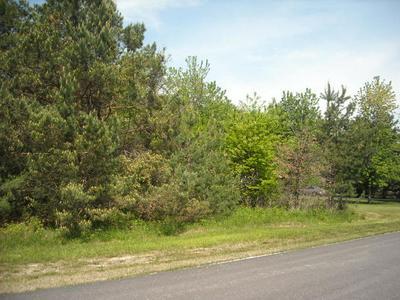 LOT 23 S PINEWOOD LANE, Monee, IL 60449 - Photo 2