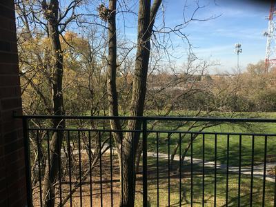 3400 N OLD ARLINGTON HEIGHTS RD UNIT 404, Arlington Heights, IL 60004 - Photo 2