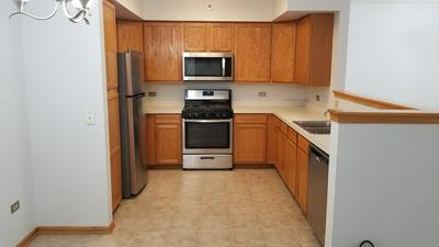 10720 S WASHINGTON ST APT 201, Oak Lawn, IL 60453 - Photo 2