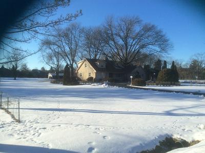 8S220 COLLEGE RD, Naperville, IL 60540 - Photo 1