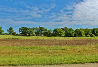 LOT 130 COUNTRY CLUB LANE, Morris, IL 60450 - Photo 2