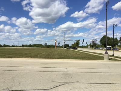 1 W LARAWAY RD, New Lenox, IL 60451 - Photo 1