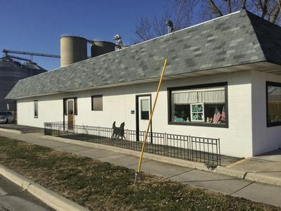 101 E SPRINGFIELD RD, ARCOLA, IL 61910 - Photo 1
