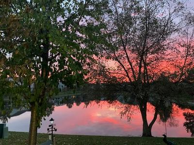 1619 ASHBURY LN, Romeoville, IL 60446 - Photo 2