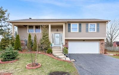 1296 BIG HORN TRL, CAROL STREAM, IL 60188 - Photo 1