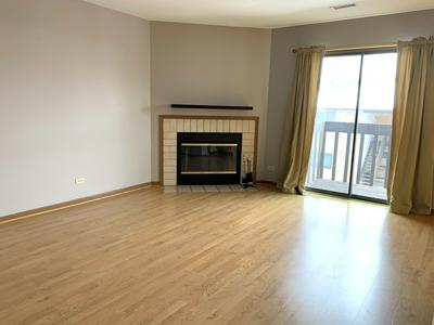 381 S COLLINS ST APT F, South Elgin, IL 60177 - Photo 2