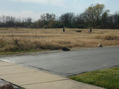 22300 KARLOV AVE, Richton Park, IL 60471 - Photo 2