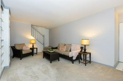 2732 WEEPING WILLOW DR APT B, LISLE, IL 60532 - Photo 2