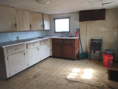 428 FREEPORT ST, Orangeville, IL 61060 - Photo 2
