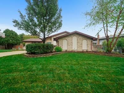 14638 S MALLARD LN, Homer Glen, IL 60491 - Photo 2
