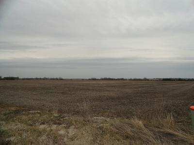 17415 W BERNHARD RD, Elwood, IL 60421 - Photo 1