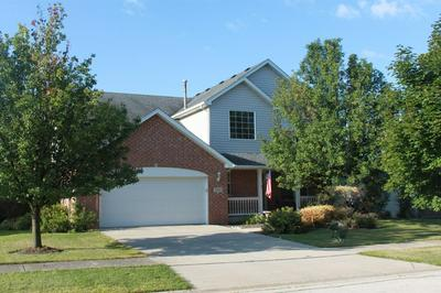 16517 W COURTSIDE DR, LOCKPORT, IL 60441 - Photo 2