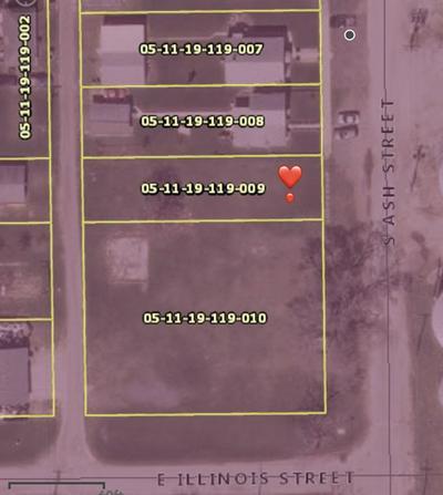117 S ASH ST, MOMENCE, IL 60954 - Photo 2