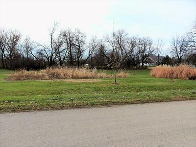 000 LEAF RIVER ROAD, LEAF RIVER, IL 61047 - Photo 2