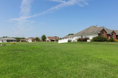924 WINCHESTER GREEN DR, Wilmington, IL 60481 - Photo 1