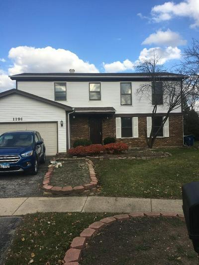 1191 PINETREE LN, Bartlett, IL 60103 - Photo 2