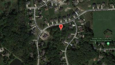 13897 STONEBRIDGE WOODS XING, Homer Glen, IL 60491 - Photo 2