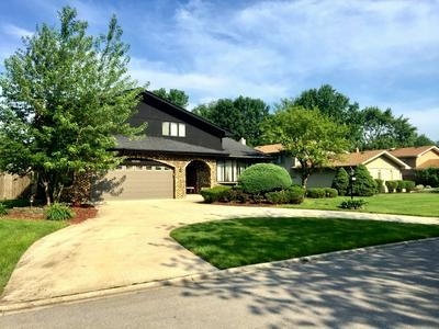 12148 FORESTVIEW DR, Orland Park, IL 60467 - Photo 2
