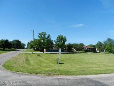 101 W 10TH ST, Gridley, IL 61744 - Photo 1