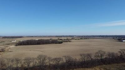 TRACT 43 HIDDEN RIVER COUNTY RD 2600 NORTH, Mahomet, IL 61853 - Photo 2