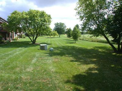 664 ELIZABETH DR # 664, Wood Dale, IL 60191 - Photo 2