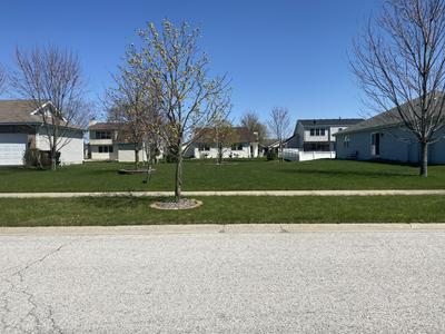1439 TRAILSIDE DR, Beecher, IL 60401 - Photo 2