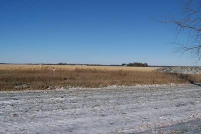 922 N 1ST ST, Fairbury, IL 61739 - Photo 2