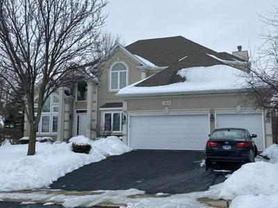 2419 LEVERENZ RD, Naperville, IL 60564 - Photo 1