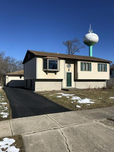 8806 FAIRWAY DR, Orland Park, IL 60462 - Photo 1