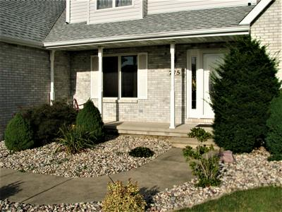 775 S LAURA LN, DIAMOND, IL 60416 - Photo 2