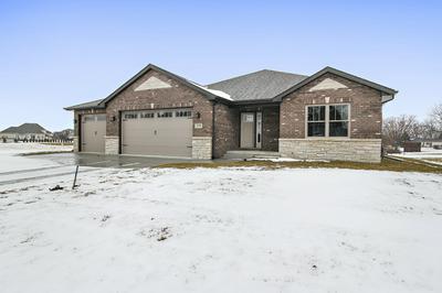 309 S RATHJE RD, PEOTONE, IL 60468 - Photo 1