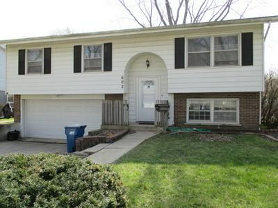 602 S 5TH ST, WEST DUNDEE, IL 60118 - Photo 1