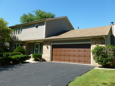 40 RODENBURG RD, Roselle, IL 60172 - Photo 1