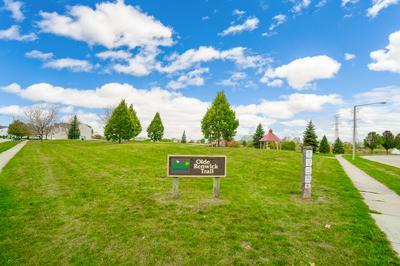 3711 OLD RENWICK TRL, Joliet, IL 60435 - Photo 2
