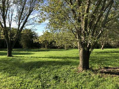 6858 PRAIRIE HILL RD, SOUTH BELOIT, IL 61080 - Photo 2